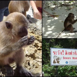 Thailand Phuket Part 3 – Phi Phi Island and Khai Island