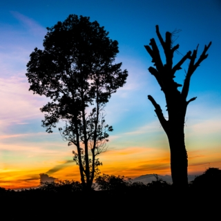 East Java, Indonesia Itinerary and Budget – April/May 2014, 5 Days