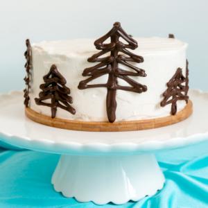 Baileys Tiramisu Cake