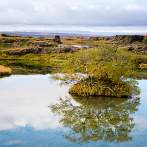 day13 iceland